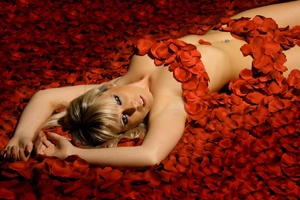 American Beauty - Shooting